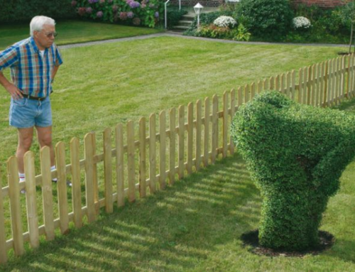 Beter een goede buur dan een verre vriend